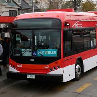 RED modifica recorridos y renueva flota de buses